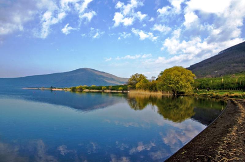 Acqua e Vulcani. Tè Con la Scienza ed escursione al Lago di Vico ...
